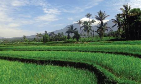 5 Desa di Indonesia yang Menawarkan Liburan Seru