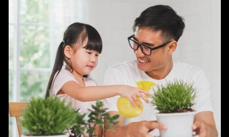4 tips merawat tanaman hias untuk pemula!